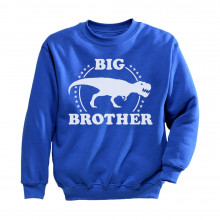 Trex Raptor Big Brother Gift Idea For Elder Sibling Children