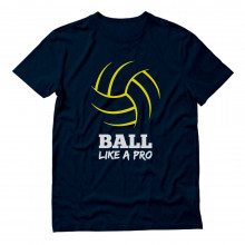 Volleyball Ball Like a Pro