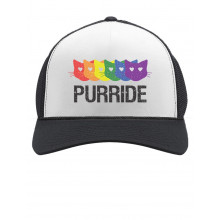 Purride Gay & Lesbian Pride Cat Lover Rainbow Flag