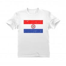 Paraguay Vintage Flag