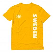 Sweden Football / Soccer Team