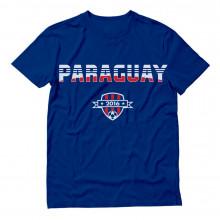 Paraguay Soccer Team 2016 Football Paraguayan Fans