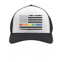 No Hate In My State Gay & Lesbian