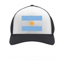 Vintage Argentina Flag