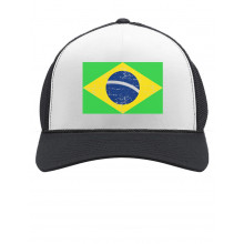 Retro Brazil Flag